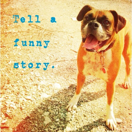 tell a funny story